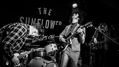 The Hungry Ghosts (Indie Images) Tags: musician music monochrome birmingham gig livemusic performance onstage performer rockband stagelighting blackandwhitephotograph blackandwhiteimage gigphotography sunflowerlounge livemusicphotographs redditchband midlandsmusic thehungryghosts indieimagesphotography amberriot thelizzards