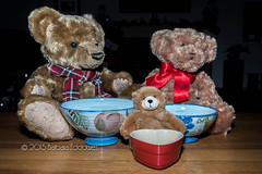#75 Fairytale Illustration (belincs) Tags: uk stilllife december flash indoor lincolnshire teddybear 2015 115picturesin2015
