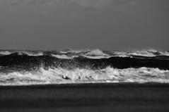 German Bight: northwest 5 to 6, shifting west, sea 2.5 (Andreas Steffen) Tags: nordsee northsea deutsche bucht german bight wind sea waves junk scrap sony alpha slt57