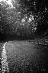 (Jack_from_Paris) Tags: r0001684bw ricoh gr apsc capture nx2 lr monochrom noiretblanc street bw wide angle guadeloupe gwada sun soleil 971 pluie virage route volcan palm trees arbres la soufrire humidit humide moite
