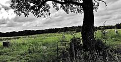beyond the gate...(HFF) (BillsExplorations) Tags: gate fence fencefriday cemetery graveyard corinthbaptistcemetery forgotten neglect marker stones old historic missouri ruraldecay rural tree