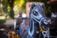 Children's horse carriage... (Hans-Franz) Tags: canon classic colmar champdemars bokeh childrenshorsecarriage rue srteet strase placerapp 5d auto revuenon multi coating 50mm f18 swirly