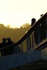 """Passerelle """"la Belle Ligeoise"""" (Lige 2016) (LiveFromLiege) Tags: lige liege luik lttich liegi lieja wallonie belgique belgium passerelle labelleligeoise boverie sunset sunlight contrejour pont bridge meuse city"""