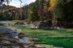 Mon paradis sur terre (pascal_roussy) Tags: rivire river automne fall paysage landscape eau water vert green arbre canada qubec gaspsie pabos nature nikon d3100