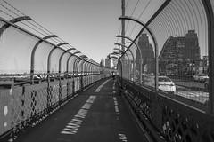 sydney harbour bridge walk (Greg Rohan) Tags: outdoor walk photography 2016 d7200 sydney sydneyharbourbridge bridge bw blackandwhite monochrome architecture walkway