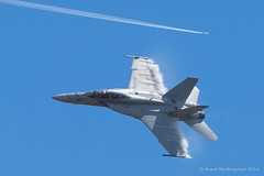 _MG_6720.jpg (Reed Skyllingstad) Tags: 163 airexpo2016 color fa18f jblm jointbaselewismcchord nj outdoors outside sunny