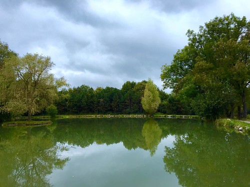Found this #serene #lake in the #ViennaWoods