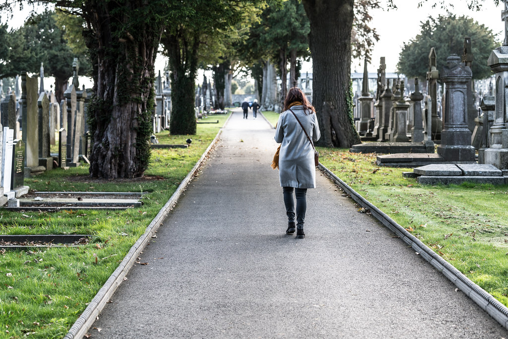 A QUICK VISIT TO GLASNEVIN CEMETERY[SONY F2.8 70-200 GM LENS]-122058