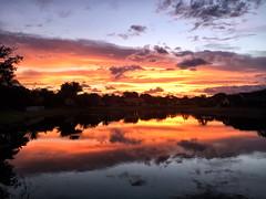 Thanksgiving Sunrise 11.24.2016 (www.LKGPhoto.com) Tags: sunrise morning iphone 6plus nature clouds reflection orange pink iphoneography wwwlkgphotocom lkgphotography