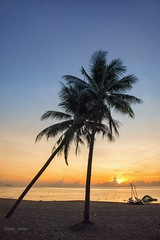 Sunrise at Nha Trang beach / Bnh minh trn bin Nha Trang (break_away) (V_Quang) Tags: beach beautiful boat clouds coconut coconutpalm couple dawn mountain nature nha sand sea seascape sky sun sunrise together trang transportation tree nhatrang vitnam cyda bnhminh nng ct bibin