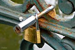 Tro amoroso (Franco DAlbao) Tags: francodalbao dalbao lumix candados padlocks tres three hierro iron amor love tro moda tendencia trending metal cerrado closed xido rust puente bridge