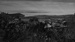 That View Revisited (-j-o-s-e-) Tags: cregneash calf man isle irish sea water placid sound rays sunlight dry stone wall bracken overgrown moody natural rural coastline seascape landscape low key bw blackandwhite