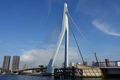 Erasmus Bridge @ Wilhelminapier @ Kop van Zuid @ Rotterdam (*_*) Tags: rotterdam netherlands nederland europe city october 2016 autumn fall automne kopvanzuid island wilhelminapier erasmusbrug erasmus bridge