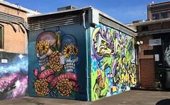 A Corner In Freak Alley (Sandra Lee Hall) Tags: art idaho boise freakalley graffiti artist talented painted creative colorful skulls