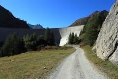 barrage des Toules (bulbocode909) Tags: valais suisse bourgstpierre barragedestoules barrages montagnes nature lacs lacdestoules fleurs bleu vert valdentremont