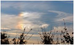 Nebensonne, sun dog (LL) Tags: parhelia nebensonne halo erscheinung sundog sky himmel wolken clouds england parhelion