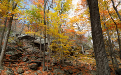 Bear Mountain (Terry (α)) Tags: bearmountain fallfoliage autumnleaves upstateny 500px