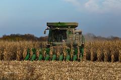 Granger, Iowa 10/29/2016 (Doug Lambert) Tags: combine johndeere field farmfield harvesting harvest midwest rural farming farmequipment granger iowa green