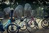 Exploring the Monoliths (lilnjn) Tags: animals biking portugal sports bikes monoliths