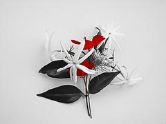 bouquet 1l (Kookoo sabzi) Tags: july2015 newtonlibraryshow