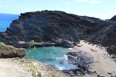 IMG_1301 (michelleingrassia) Tags: halonablowhole blowhole oahu hi hawaii halonabeachcove cove beach