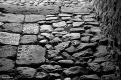 ...Salagon selciato -  BW (antosti) Tags: francia provenza salagon abbazia selciato bw nikon d70s giardini museo heritage ruby5