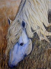 Horse's head, by Antnio - DSC00475 (Dona Mincia) Tags: wild horse art nature animal watercolor painting paper eyes arte head eating natureza study cavalo cabea pintura selvagem aquarela