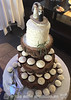 Rustic Wedding Cake & Cupcakes