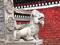 Snowy Lion (Magryciak) Tags: 2005 trip travel nepal mountain snow weather trekking trek outdoors asia outdoor walk buddha culture monastery tradition himalaya khumbu sherpa tramp gompa