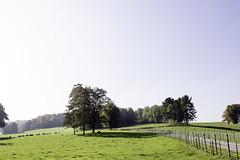 IMG_2896-Modifier (mycenium) Tags: panorama belgium belgique farm bow land prairie chateau region campagne brabant ferme bois vache wallon wallonie grez grezdoiceau laurensart wallone doiceau