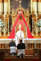 Solemn Procession with the Most Blessed Sacrament (Canons Regular) Tags: catholic devotion hours mass forty eucharist sacrament monstrance cantius