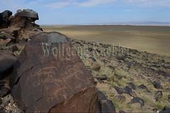 30095301 (wolfgangkaehler) Tags: old animal animals rock asian ancient asia desert mongolia centralasia petroglyph gobi blackmountains petroglyphs ibex mongolian gobidesert southernmongolia