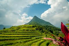 Fansipan (Eustaquio Santimano) Tags: mountain northwest vietnam pa cai sa region lao province highest indochina xi phan metres 3143 fanispan png