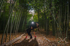 Bamboo Forest Love (Mike Ver Sprill - Milky Way Mike) Tags: love beautiful backlight landscape engagement newjersey amazing gorgeous secret backlit bambooforest rutgersgardens weddingproposal offcameraflash nikond600 dipkiss surpriseproposal michaelversprill mikeversprill