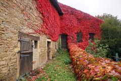 2016-10-24 10-30 Burgund 184 Berze-La-Ville