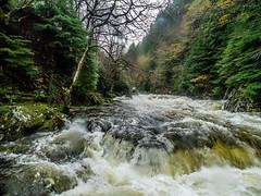 20151115-_1150478.jpg (IanRolo) Tags: bridge river y waterfalls betwsycoed betws coed snowdonia miners afon minersbridge llugwy afonllugwy riverllugwy