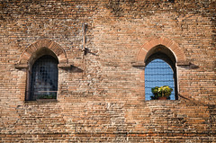 Neighbours (Iliyan Yankov) Tags: old windows flower building window contrast alive neighbours paralel