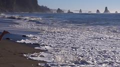Running away from a wave (Sergiy Matusevych) Tags: park family feet beach kids foot washington travels maya hiking bare wave national third wa olympic np forks rialto lapush
