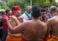 A Devotee Cheek Is Pierced With A Giant Skewer By A Priest At Thaipusam Hindu Festival At Batu Caves, Southeast Asia, Kuala Lumpur, Malaysia (Eric Lafforgue) Tags: shirtless pierced people men tourism public festival horizontal mouth festive religious outdoors photography pain asia southeastasia day cheek indian faith religion ceremony piercing parade celebration event malaysia devotion pierce ritual priest kualalumpur spirituality tradition devotee endurance hindu hinduism malaysian groupofpeople cultures pilgrimage batu skewer thaipusam hindi pilgrim selangor decorated placeofworship penance traveldestinations humanmouth humanbodypart kl288