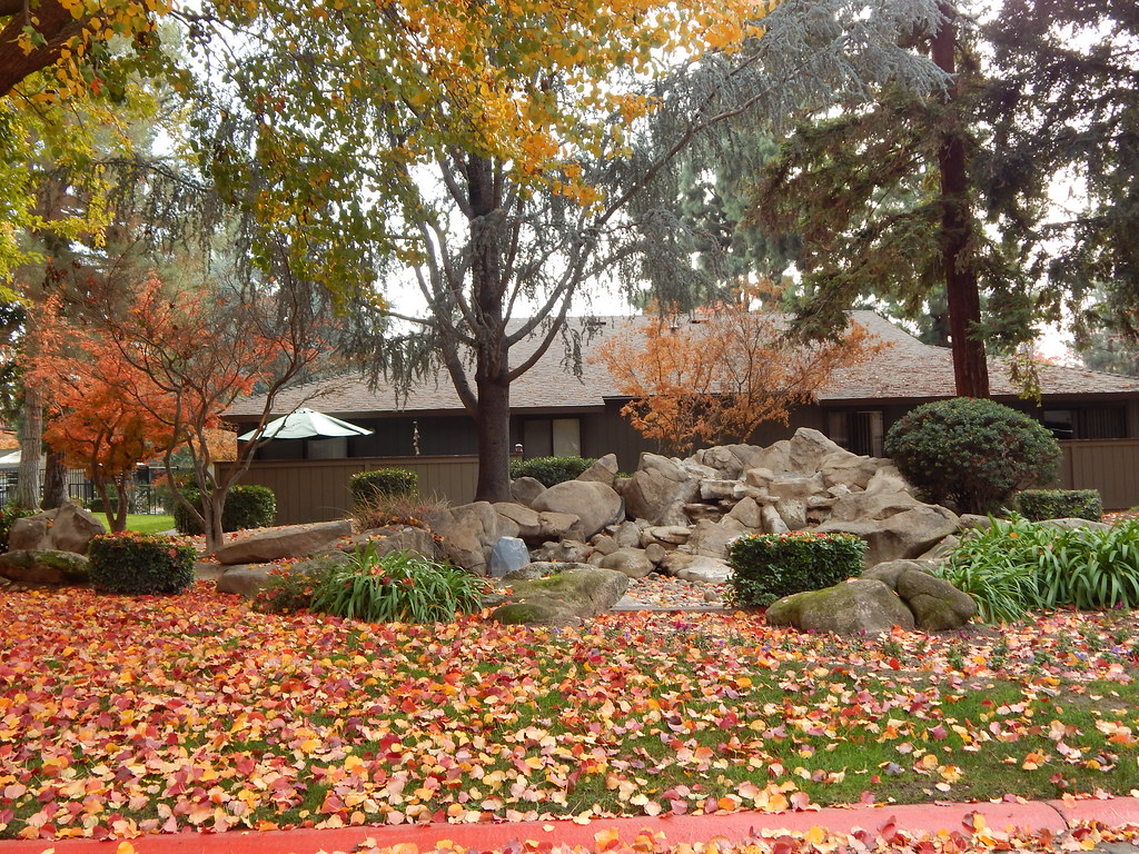 The World\'s most recently posted photos of autumn and fresno ...