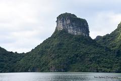 D72_7544 (Tom Ballard Photography) Tags: vietnam halongbay tourboats bayclub 20151118