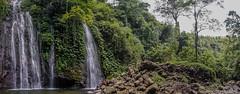 _DSC3933_Bali_09_16 (Saverio_Domanico) Tags: bali indonsie munduk voyage