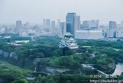 toyotomioosakajouishigaki (manhole_castle) Tags: