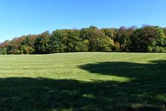 (Vitatrix) Tags: schwbische alb badenwrttemberg bume wiese pflanzen outdoor natur nature landschaft landscape schatten