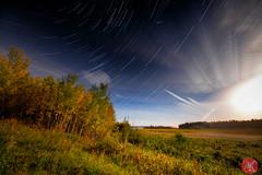 Harvest Moon star trails (Kasia Sokulska (KasiaBasic)) Tags: canada alberta elkisland harvestmoon landscape night fujix astotinlake startrails nature stars moon sky fall