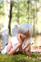 Kaito Gibson (Nathy1317) Tags: doll smartdoll crimson