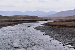 MAQ_0408 (MolviDSLR) Tags: deosair national park skardu gilgit baltistan northern areas pakistan brown bear wild life scenery landscape