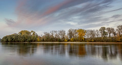 Isle (RobertFenyo) Tags: danube hungary isle river riverside autumn colorful nature landscape