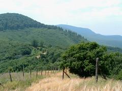 020A Kkes s a Cserepes-tet a Oroszlnvrrl (ossian71) Tags: magyarorszg hungary mtra termszet nature tjkp landscape hegy mountain