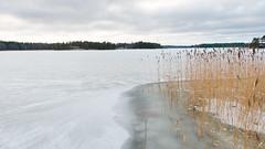 Frozen (JarkkoS) Tags: 2470mmf28eedafsvr cold d800 espoo finland frozen ice landscape sea suvisaaristo water winter esbo uusimaa fi